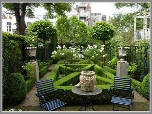 Jenis Tanaman Favorit Untuk Taman Rumah Edupaint